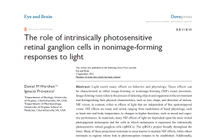 The role of intrinsically photosensitive retinal ganglion cells in nonimage-forming responses to light